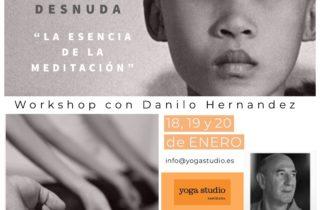 consciencia desnuda la esencia de la meditacion workshop