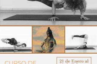 Yoga Invertidas
